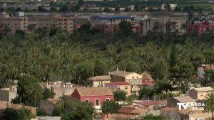 Las áreas de Medio Ambiente y Deportes de Orihuela coordinan las inminentes obras de El Palmeral