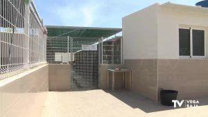 La protectora de animales APADAC exige al Ayuntamiento de Callosa que cumpla con los pagos atrasados
