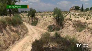 La Confederación Hidrográfica del Segura trabaja en la Rambla Rubes de Benejúzar