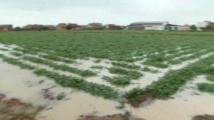 La gota fría inunda la comarca en una jornada de lluvia histórica