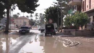 Diputación aprueba instar al Gobierno la Declaración de zona catastrófica en la Vega Baja