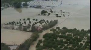 El PSPV eleva a las CCVV el proyecto para evitar desbordamientos en La Cañada de Algorfa