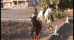 Menores discapacitados de Redován tendrán la oportunidad de hacer terapia con caballos
