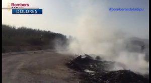 Arden 2.000 metros cuadrados de matorral en el Parque Natural de El Hondo