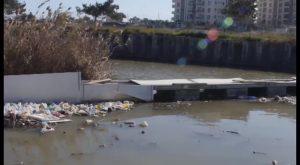 ¿El nuevo presidente de la CHS marcará un antes y un después en el tratamiento del río Segura?