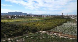 La Vega Baja lanza un proyecto para potenciar la imagen de la huerta como producto turístico