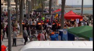 Torrevieja se vuelca con la feria de ONGs por una buena causa