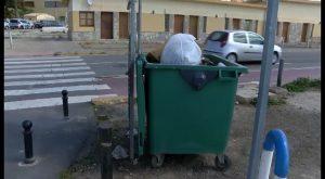 Generalitat deja sin servicio de recogida de basuras a la Cofradía de Pescadores de Torrevieja