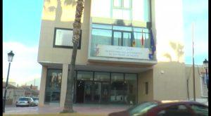 San Miguel de Salinas pide colaboración ciudadana para identificar las colonias de gatos