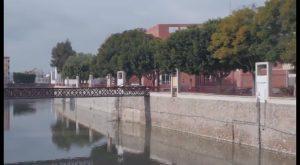 El Ayuntamiento de Rojales cede 23 nuevas parcelas de los huertos urbanos