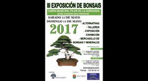 Pilar de la Horadada acoge la tercera exposición de bonsáis en su carpa municipal