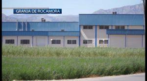 Tres heridos tras desplomarse el falso techo de un matadero en Granja de Rocamora
