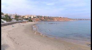 Medio Ambiente realizará en las playas de Orihuela actividades de concienciación medioambiental