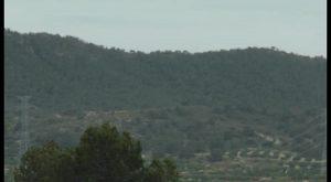 San Miguel reclama una reten para proteger el entorno de Sierra Escalona