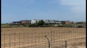El MAPAMA inicia obras de emergencia para aumentar el rendimiento de la desalinizadora de Torrevieja