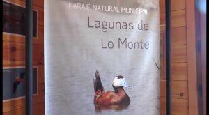 Las Lagunas de lo Monte de Pilar de la Horadada ya son accesibles