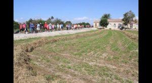 Éxito de participación en la nueva edición de la ruta de la huerta histórica de Rojales