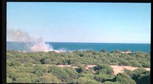 Un nuevo incendio en la pinada de Guardamar del Segura