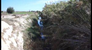 Conselleria invierte 3 millones de euros en la Vega Baja en obras relacionadas con la agricultura