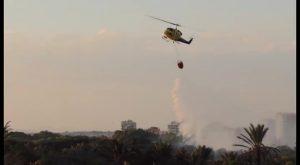 Arden 400 metros cuadrados de pinos y palmeras en el séptimo incendio en Guardamar