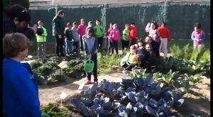 """Medio Ambiente impulsa a la consolidación del colegio de Hurchillo como """"Ecoescuela"""""""