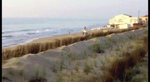 La AVT incluye las dunas de Guardamar en el catálogo de Paisajes Representativos y Turísticos