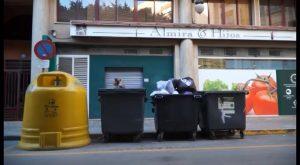 Torrevieja, Orihuela y Guardamar: los municipios que más reciclan