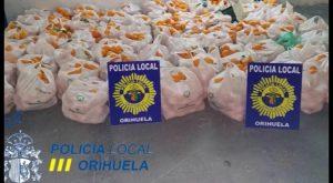 """La Policía de Orihuela sorprende """"in franganti"""" y detiene a 5 personas por robar 1200 kg de naranjas"""