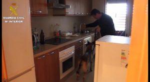 Guardia Civil desmantela una organización criminal dedicada al robo de viviendas