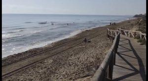 25 banderas azules para las playas de la Vega Baja
