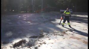 Limpieza Viaria invertirá 600.000 euros para contratación de hasta 59 trabajadores