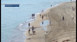 Bandera roja en la Playa de Mil Palmeras por una picadura de Carabela Portuguesa
