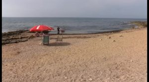 Nuevo mobiliario instalado en las playas para perros ha sido arrancado y arrojado al agua