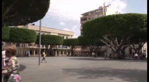 Homenaje único en Guardamar, nuevos aparcamientos en Almoradí y premios de pintura en el Pilar