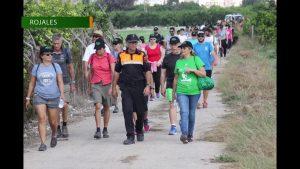 La ruta del Sendero Local Huerta Histórica de Rojales reunió este domingo a más de 300 personas