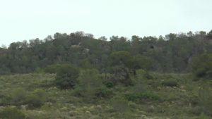 El Consell declara paisaje protegido la Sierra Escalona y su entorno