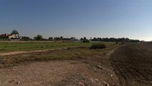 Banco de suelo agrícola en Catral