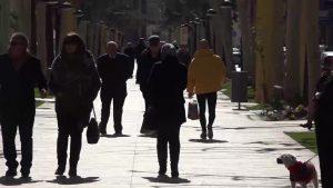 Desarticulados dos grupos delictivos asentados en la Vega Baja