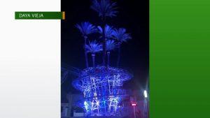 La palmera centenaria de Daya Vieja lucirá de azul por el Día Mundial del Autismo