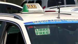 Los taxistas de Torrevieja y Orihuela volverán a compartir servicio en la costa este verano