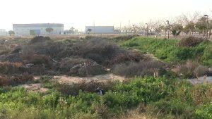 Comienza la adecuación de la parcela donde se ubicará la planta de transferencia de Dolores
