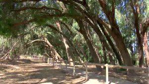 Rincones por descubrir en nuestro parque natural