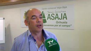 Las últimas lluvias benefician a los agricultores de la comarca