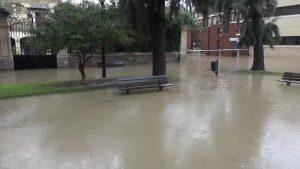 Rescates en Pilar de la Horadada, San Miguel, Benferri y Callosa de Segura