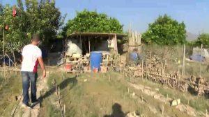 Arrendatarios de los huertos municipales de Bigastro piden más vigilancia