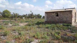 Las fotos del campo de concentración de Albatera se convierten en la obra más consultada de 2019