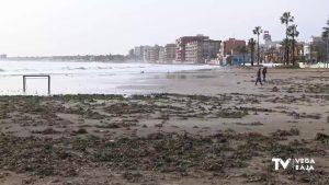 El Ministerio actuará en Torrevieja, Guadamar, Pilar de la Horadada y Orihuela tras borrasca «Gloria»