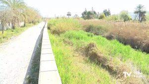 Comienza la limpieza en el tramo del río Segura que discurre desde Orihuela hasta Beniel