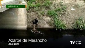 Cs pide a Mollà que ponga fin a los vertidos ilegales en Orihuela