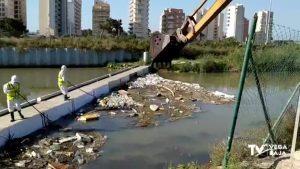 La Confederación Hidrográfica retira la basura acumulada en el río Segura a su paso por Guardamar